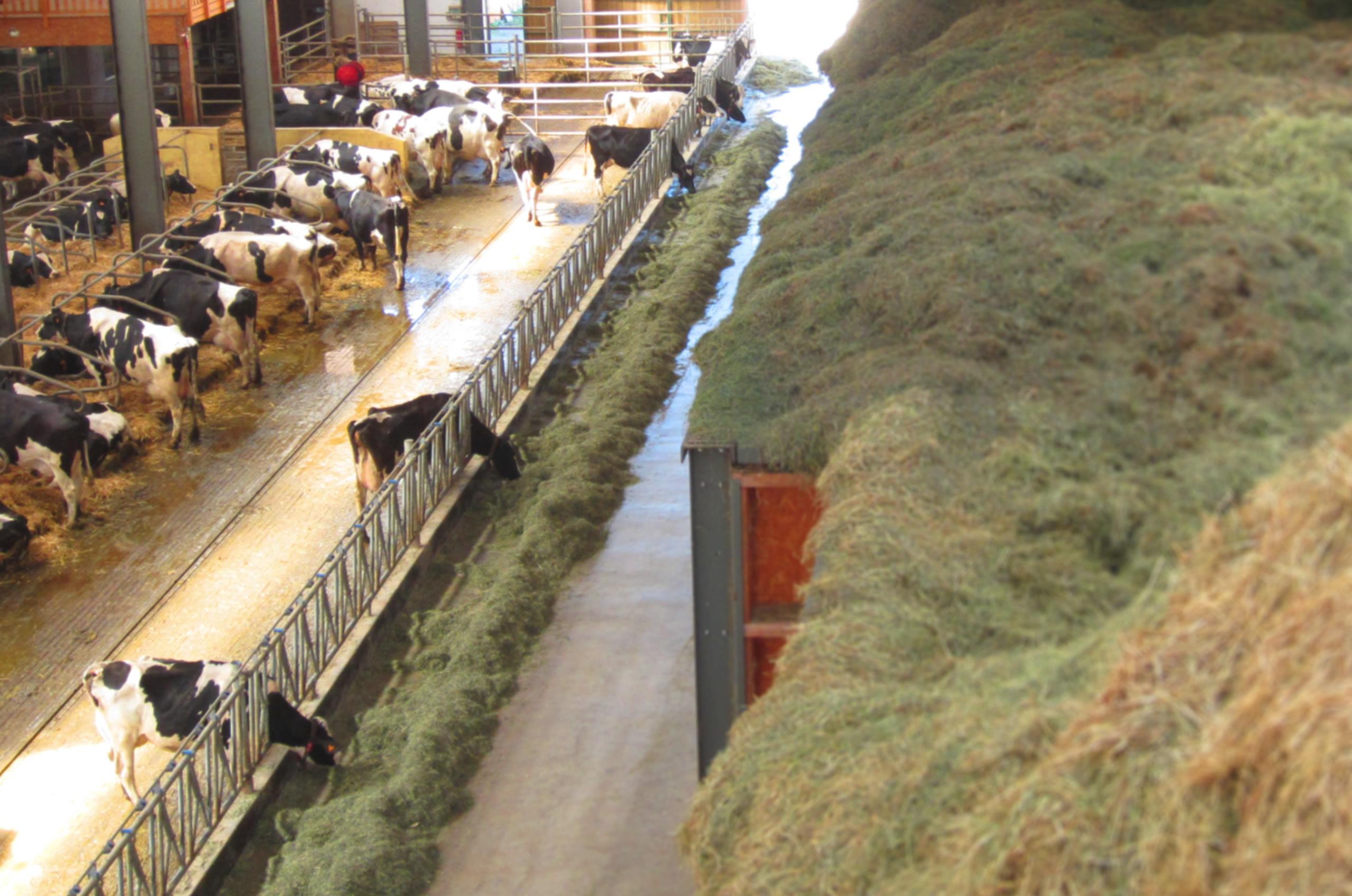Image de Valpronat stabulation en ferme et installation séchage en grange